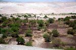 Oásis no Deserto de Atacama
