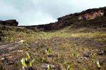 no topo do Monte Roraima