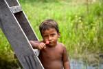 amazoniño